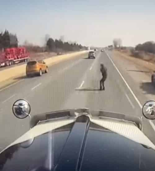canadian trucker avoids suicidal person on highway